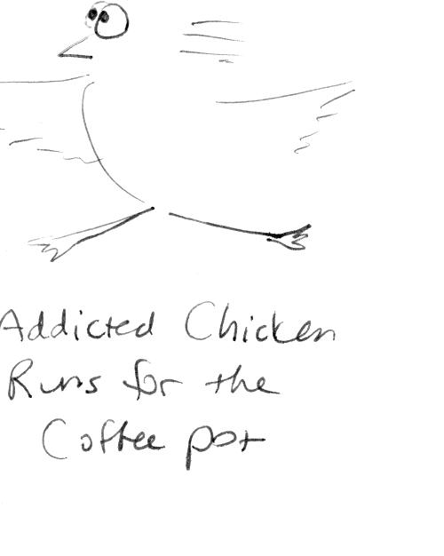 Chicken running across frame