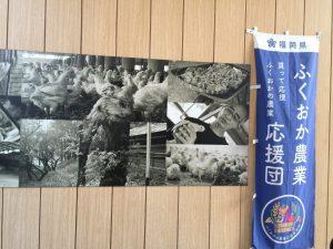 Tokyo Ginza Chicken Street Ad